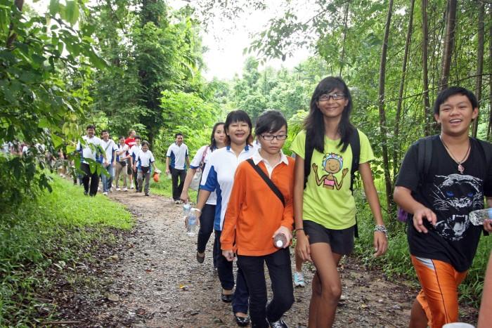 Y Nature Walk